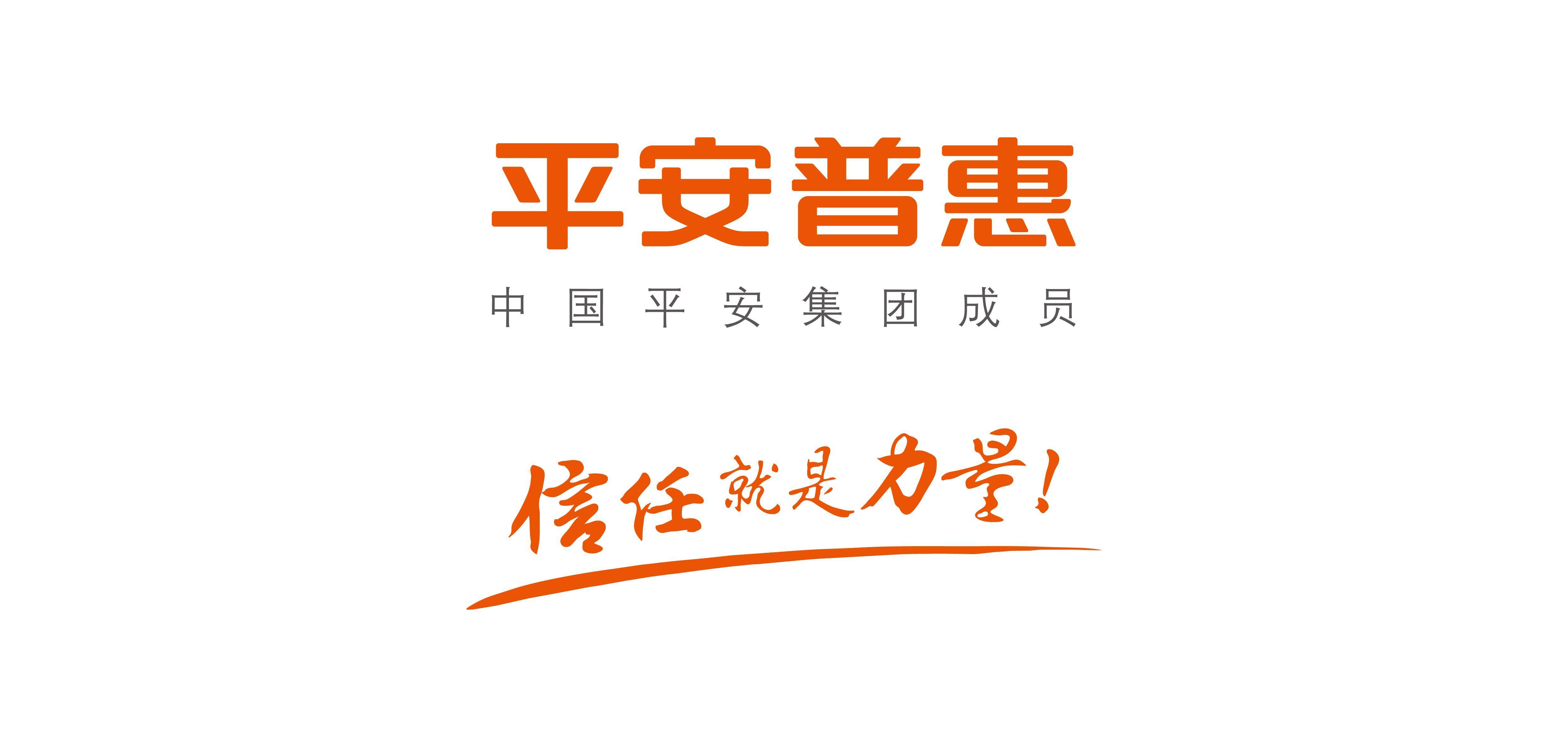 平安普惠信息服务有限公司广元第一分公司