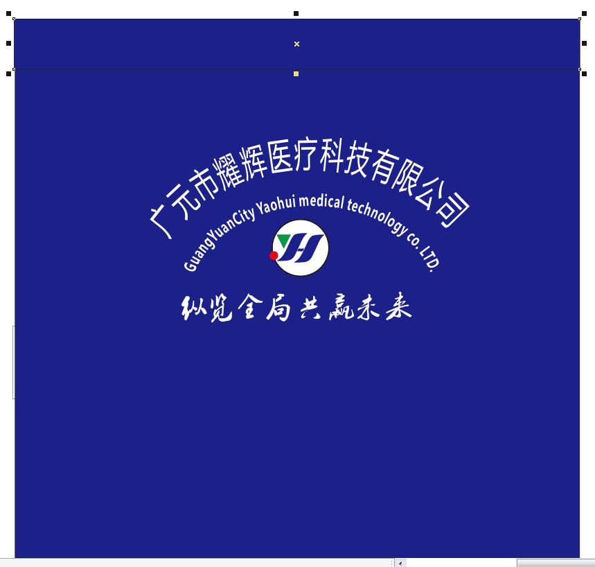 广元市耀辉医疗科技有限公司