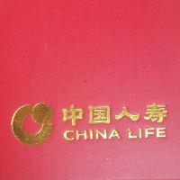 中国人寿保险股份有限公司广元市利州区支公司河西开发区营销服务部